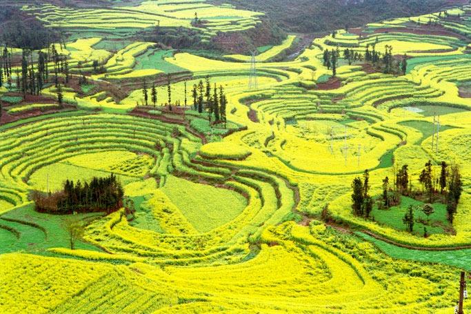 Louping, China