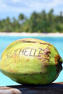 7 Things You Must Experience In The Seychelles